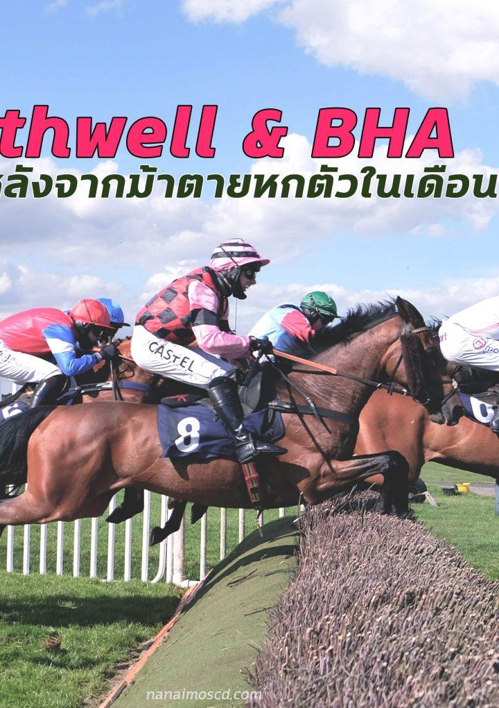 Southwell & BHA สอบสวนหลังจากม้าตายหกตัว ในเดือนที่ผ่านมา